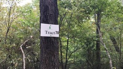 Tract 70 at Timber Shoals Ranch