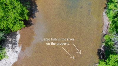 Very clear section of the Finley River on this property
