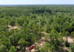 Aerial facing west showing the easement road and the private driveway on the property.