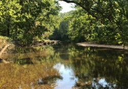 The Finley River where it borders the property.