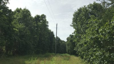 Electric is directly on the property.