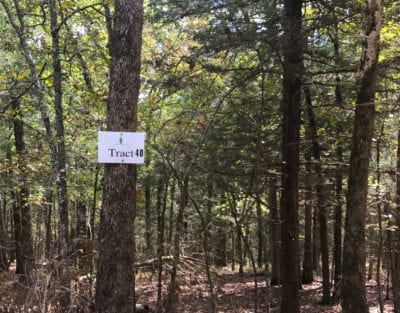 Tract 40 at Timber Shoals Ranch is just over 3 acres in size.