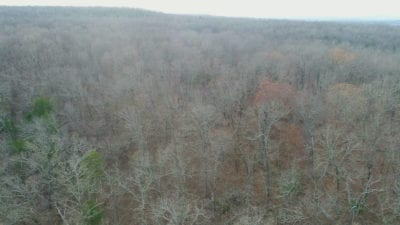 Aerial showing the good timber on this property.