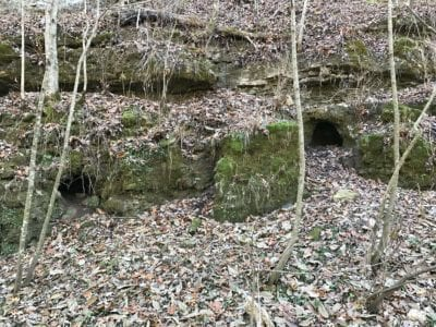 Caves in the bluff on the property.