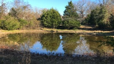 Pond on the property.