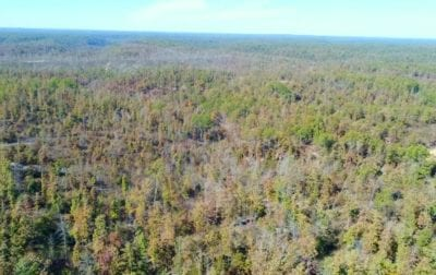Aerial looking westerly over the property.